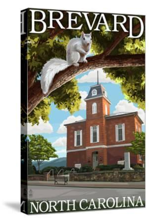 Brevard, North Carolina - Courthouse and White Squirrel-Lantern Press-Stretched Canvas Print