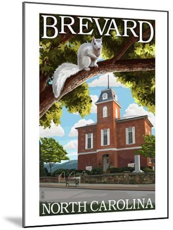 Brevard, North Carolina - Courthouse and White Squirrel-Lantern Press-Mounted Art Print