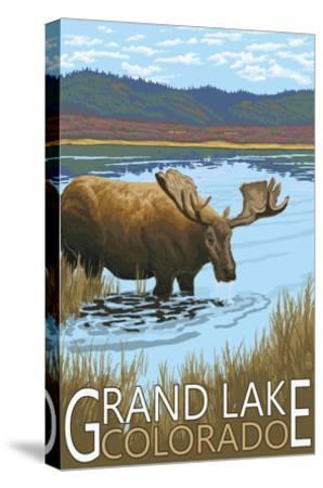Grand Lake, Colorado - Moose and Lake-Lantern Press-Stretched Canvas Print