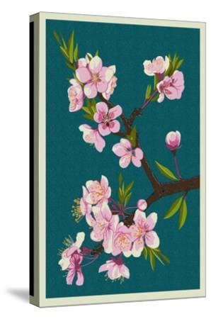 Cherry Blossoms-Lantern Press-Stretched Canvas Print