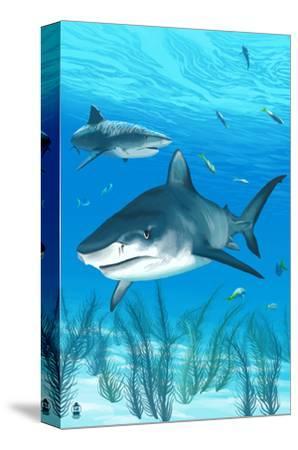 Tiger Shark-Lantern Press-Stretched Canvas Print