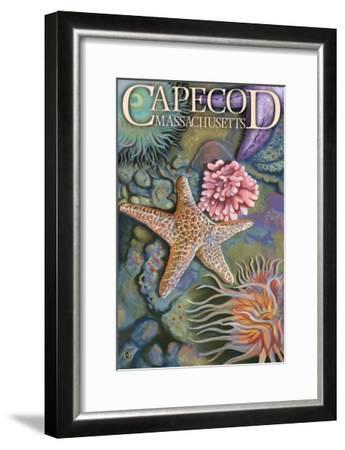 Cape Cod, Massachusetts - Tidepool-Lantern Press-Framed Art Print