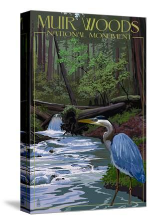 Muir Woods National Monument, California - Blue Heron-Lantern Press-Stretched Canvas Print