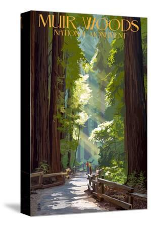 Muir Woods National Monument, California - Pathway-Lantern Press-Stretched Canvas Print