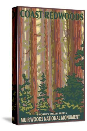 Muir Woods National Monument, California - Forest View-Lantern Press-Stretched Canvas Print