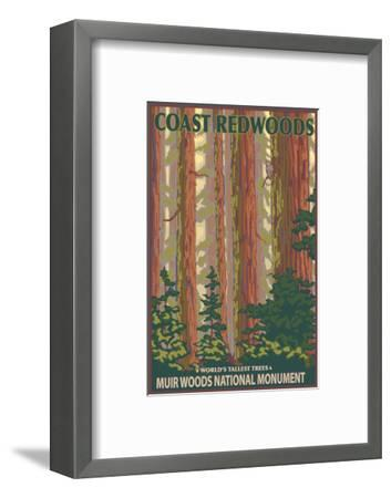 Muir Woods National Monument, California - Forest View-Lantern Press-Framed Art Print