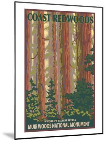 Muir Woods National Monument, California - Forest View-Lantern Press-Mounted Art Print