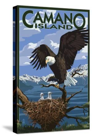 Camano Island, Washington - Bald Eagle and Chicks-Lantern Press-Stretched Canvas Print