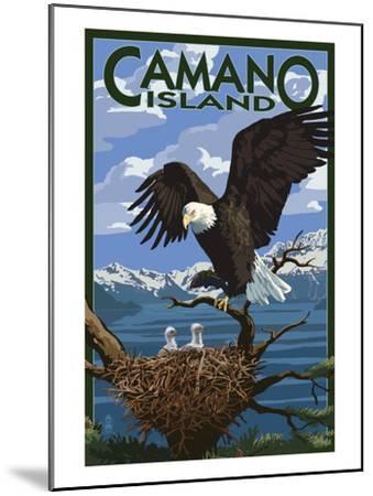 Camano Island, Washington - Bald Eagle and Chicks-Lantern Press-Mounted Art Print