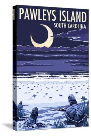 Pawleys Island, South Carolina - Baby Sea Turtles-Lantern Press-Stretched Canvas Print