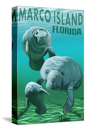 Marco Island, Florida - Manatees-Lantern Press-Stretched Canvas Print