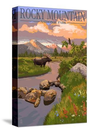 Moose and Meadow - Rocky Mountain National Park-Lantern Press-Stretched Canvas Print