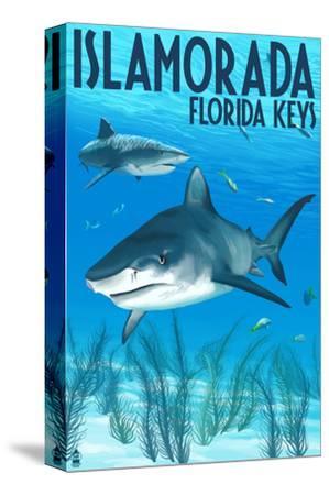 Islamorada, Florida Keys - Tiger Shark-Lantern Press-Stretched Canvas Print