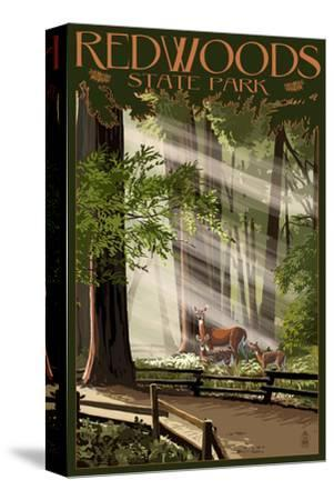 Redwoods State Park - Deer and Fawns-Lantern Press-Stretched Canvas Print
