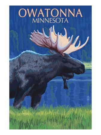 Owatonna, Minnesota - Moose at Night-Lantern Press-Framed Art Print