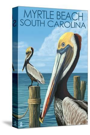 Myrtle Beach, South Carolina - Pelicans-Lantern Press-Stretched Canvas Print