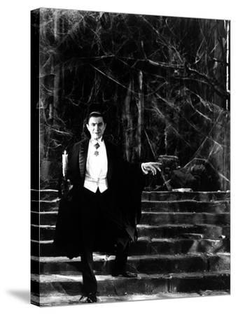 Dracula, Bela Lugosi, 1931--Stretched Canvas Print