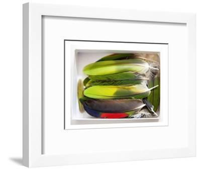 Parrot Feathers, no. 2-Judy Tuwaletstiwa-Framed Premium Giclee Print
