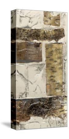 Birch Bark Abstract II-Jennifer Goldberger-Stretched Canvas Print