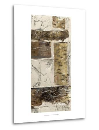 Birch Bark Abstract II-Jennifer Goldberger-Metal Print