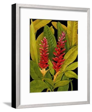 Dramatic Red Ginger-Tim O'toole-Framed Art Print