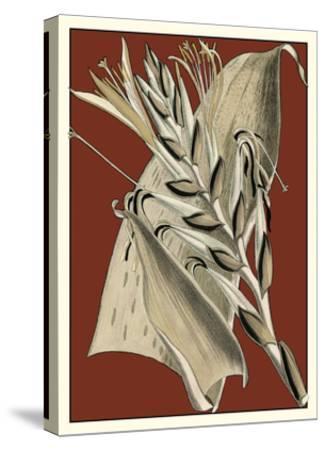Exotic Botanical II--Stretched Canvas Print