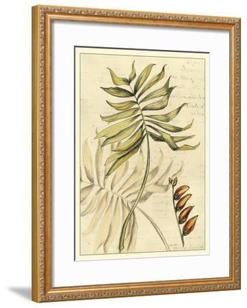 Reminiscence II-Fagalde Jarman-Framed Art Print