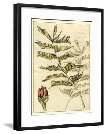 Reminiscence III-Fagalde Jarman-Framed Art Print