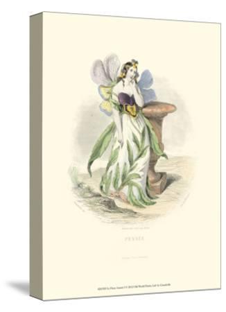 Le Fleur Animé I--Stretched Canvas Print