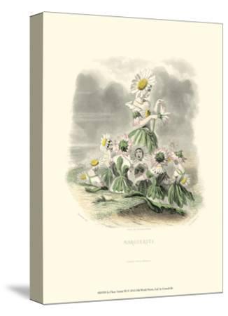 Le Fleur Animé III--Stretched Canvas Print