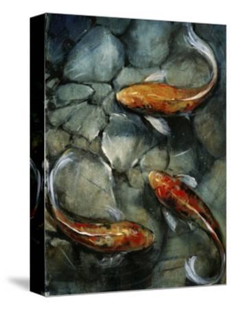 Tres Koi I-Tim O'toole-Stretched Canvas Print