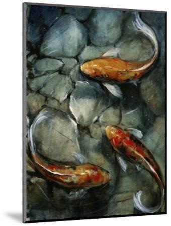 Tres Koi I-Tim O'toole-Mounted Art Print