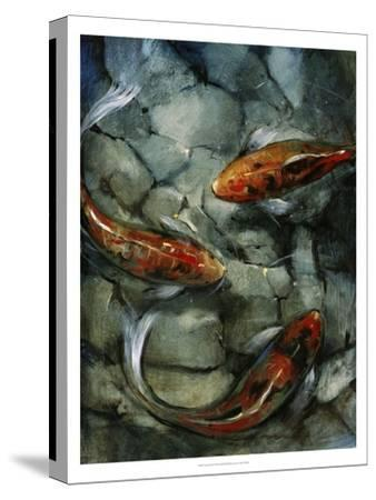 Tres Koi II-Tim O'toole-Stretched Canvas Print