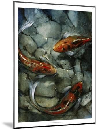 Tres Koi II-Tim O'toole-Mounted Art Print