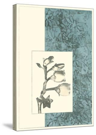 Embellished Nature's Vignette IV--Stretched Canvas Print