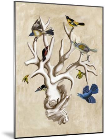 The Ornithologist's Dream II-Naomi McCavitt-Mounted Art Print