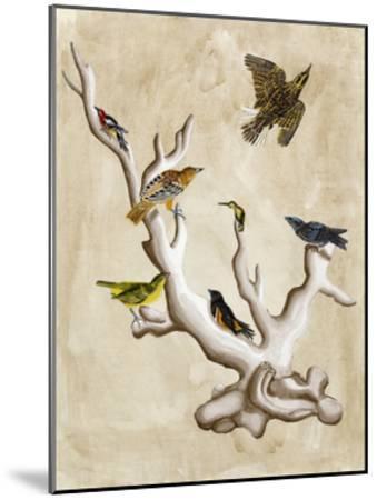The Ornithologist's Dream III-Naomi McCavitt-Mounted Art Print