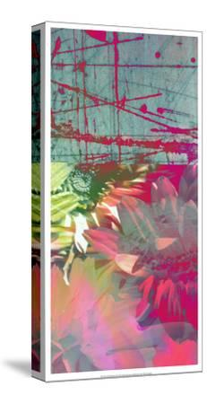 Pink Wonders II-Ricki Mountain-Stretched Canvas Print