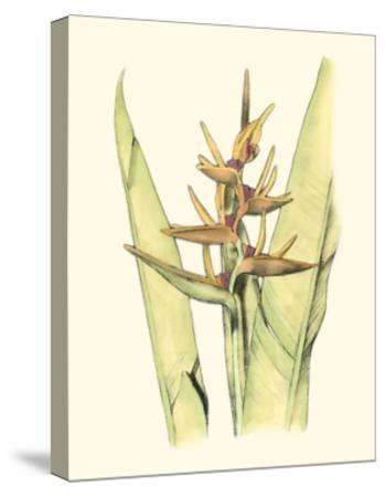 Elegant Tropics VI-Jennifer Goldberger-Stretched Canvas Print