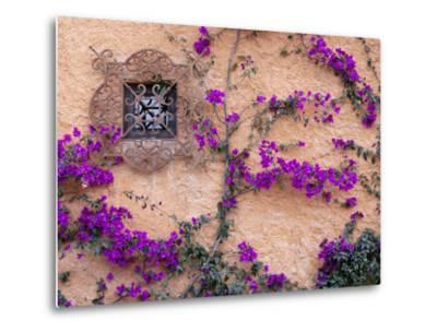 Ornamental Window, San Miguel De Allende, Mexico-Alice Garland-Metal Print
