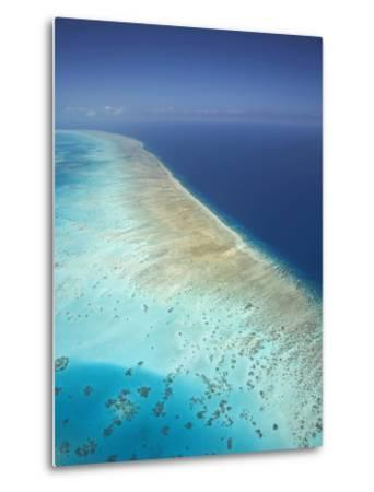 Arlington Reef, Great Barrier Reef Marine Park, North Queensland, Australia-David Wall-Metal Print