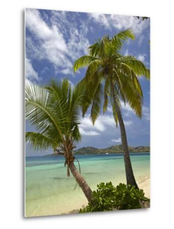 Beach and Palm Trees, Plantation Island Resort, Malolo Lailai Island, Mamanuca Islands, Fiji-David Wall-Metal Print