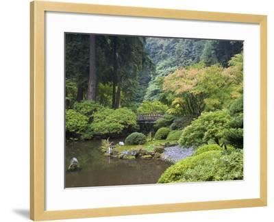 The Strolling Pond with Moon Bridge in the Japanese Garden, Portland, Oregon, USA-Greg Probst-Framed Photographic Print