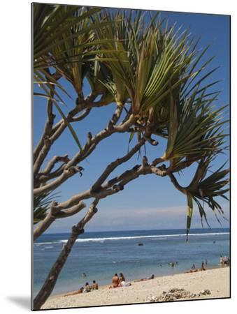 Beach, St. Pierre, Reunion Island, French Overseas Territory-Cindy Miller Hopkins-Mounted Photographic Print