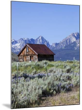 Old Barn, Sawtooth National Recreation Area, Idaho, USA-Jamie & Judy Wild-Mounted Photographic Print