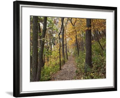 Trail to Great Bear and Little Bear Mound, Effigy Mounds National Monument, Iowa, USA-Jamie & Judy Wild-Framed Photographic Print