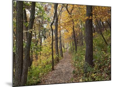 Trail to Great Bear and Little Bear Mound, Effigy Mounds National Monument, Iowa, USA-Jamie & Judy Wild-Mounted Photographic Print