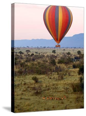 Hot-Air Ballooning, Masai Mara Game Reserve, Kenya-Kymri Wilt-Stretched Canvas Print