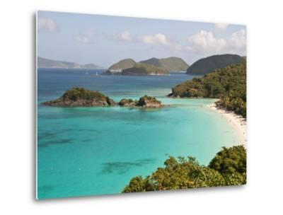 Underwater Snorkeling Trail, St John, United States Virgin Islands, USA, US Virgin Islands-Trish Drury-Metal Print
