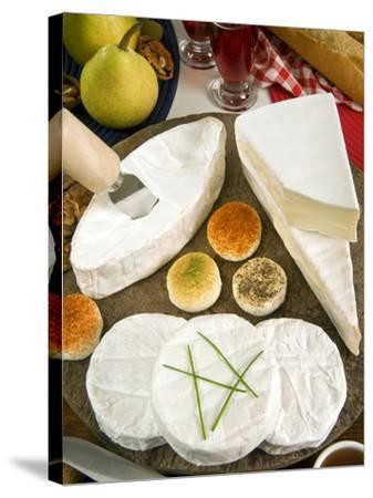 French Cheeses, France-Nico Tondini-Stretched Canvas Print